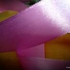 Μια σατέν κορδέλα στο χρώμα του MyOrchid
