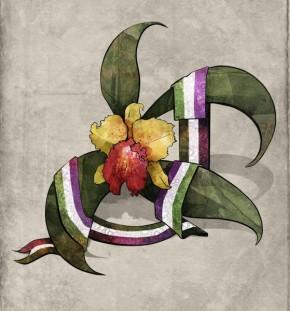 Ορχιδέα Σουφραζέτα. Πρωτότυπη εικονογράφηση της Μαρίας Μ. για το MyOrchid.gr