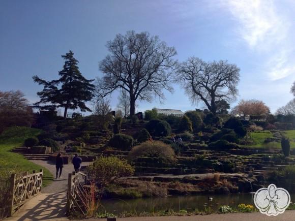 Θαυμάζω τους Άγγλους αρχιτέκτονες των περασμένων αιώνων, σχεδίαζαν κήπους με γνώμονα το πως θα είναι 200 χρόνια μετά...